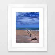 Desert Island Driftwood Framed Art Print