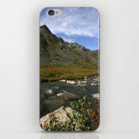 Hatcher Hike - Alaska iPhone & iPod Skin