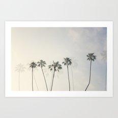 Double Exposure Palms 1 Art Print