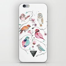BIRDS OF THE WILD iPhone & iPod Skin
