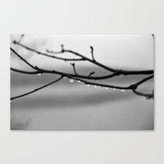 A Whisper No. 02 Canvas Print