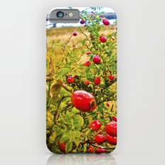 Nature red and green. iPhone 6s Slim Case