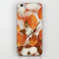 The Color Of Autumn iPhone & iPod Skin