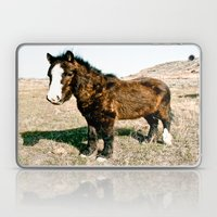 Mini Horse Laptop & iPad Skin