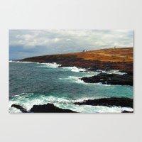 Lighthouse In Newfoundla… Canvas Print