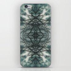 Eye of the Storm iPhone & iPod Skin