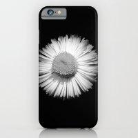 Fleabane B and W iPhone 6 Slim Case