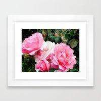 Rose #3 Framed Art Print