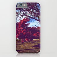 iPhone & iPod Case featuring Fall My Way | Red by Jenny Seto Photography
