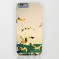 Gulls Series 1 iPhone 6 Slim Case
