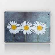 Three Marguerites Laptop & iPad Skin