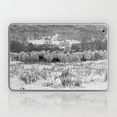 Sheep on the Brecon Beacons.Wales. Laptop & iPad Skin