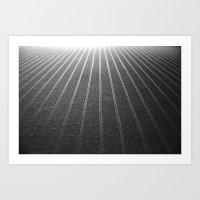 Endless Rows Art Print