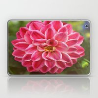 Dahlia Laptop & iPad Skin