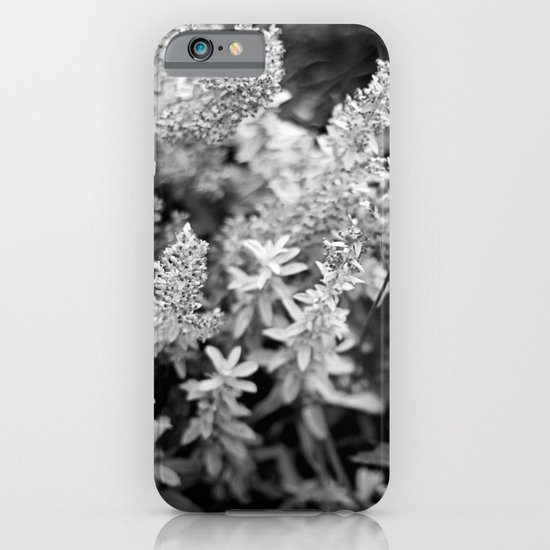 Leaves black n white iPhone & iPod Case