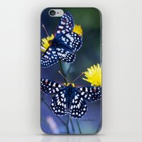 The Checkerspot Couple iPhone & iPod Skin
