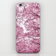 Pink view - photography iPhone & iPod Skin