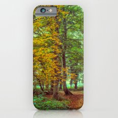A Walk In The Woods iPhone 6 Slim Case
