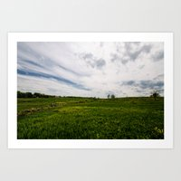On Fields Of Yellow And … Art Print