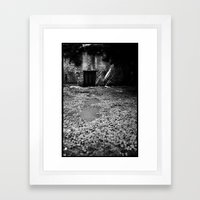 Over the Hill and through the Swamp Framed Art Print