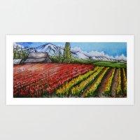 Tulips of the Skagit Art Print