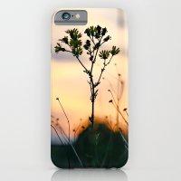 Silhouettes  iPhone 6 Slim Case
