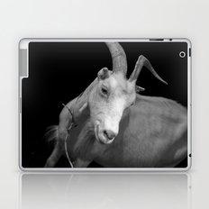 black goat Laptop & iPad Skin