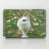 Spring of rabbit iPad Case