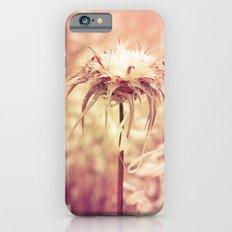 Recalling the summer iPhone 6 Slim Case