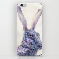 Black Rabbit iPhone & iPod Skin