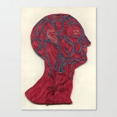 veins of the head Canvas Print