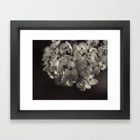 Winter Flowers Framed Art Print