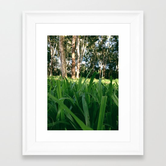 Bed of Grass Framed Art Print