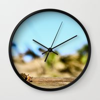 Journey of the Hermit Crab Wall Clock
