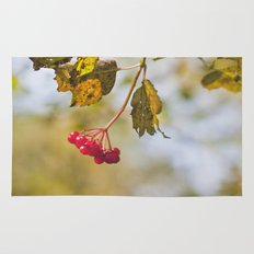 Berry Bokeh Fine Art Photographic Winter Print  Rug