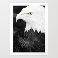 Bald Eagle With Yellow E… Art Print