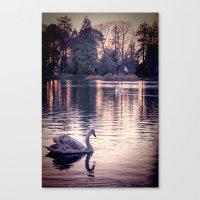Swan Lake 2 Canvas Print