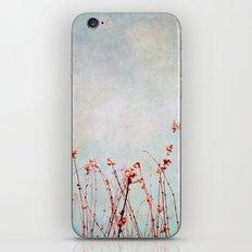 snowberries iPhone & iPod Skin