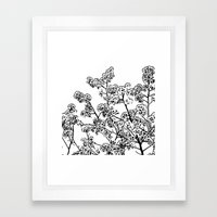 Cherry Blossom #1 Framed Art Print