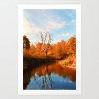 Boone Fork Creek Art Print