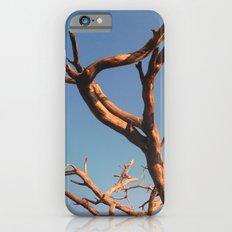 WAFU iPhone 6 Slim Case