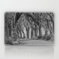 The Trees, Norfolk Laptop & iPad Skin