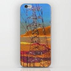 Netting iPhone & iPod Skin