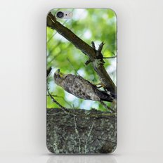 What's for lunch ? iPhone & iPod Skin