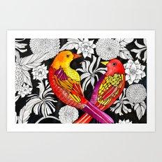 Colorful Birds Art Print