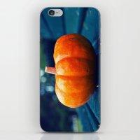 Park Bench Pumpkin iPhone & iPod Skin