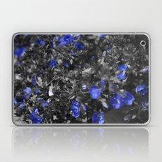 blue flox Laptop & iPad Skin
