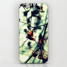 Aqua Leaves iPhone & iPod Skin