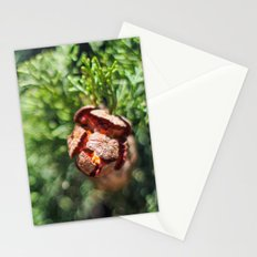 An Inner Fire Stationery Cards