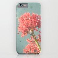 Raspberry Dream iPhone 6 Slim Case